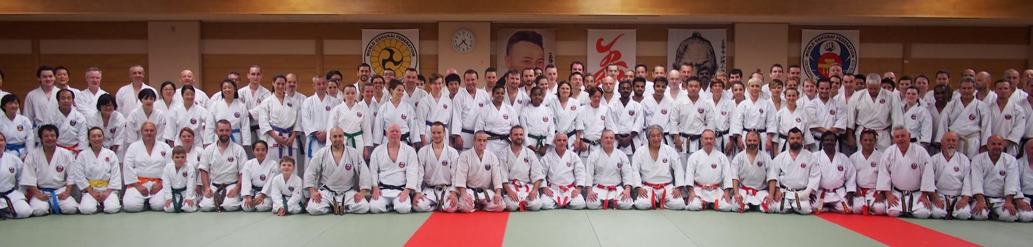 Mezinárodní seminář WOF Okinawa Shorin-ryu Karate & Okinawa Kobudo (11.-12.8.2017, Tokyo) @ Tokyo